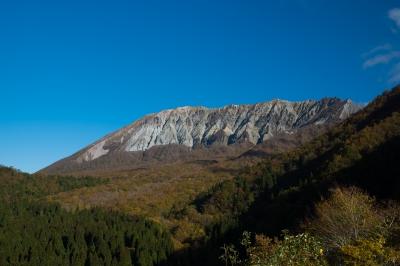 soku_33229.jpg :: 風景 自然 森林 紅葉林