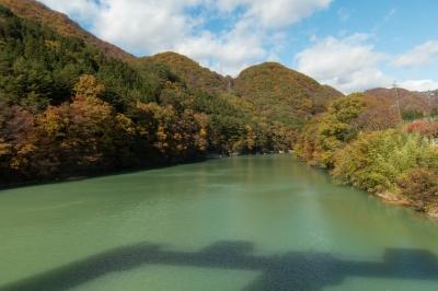 soku_33257.jpg :: 風景 自然 森林 紅葉林 ダム湖