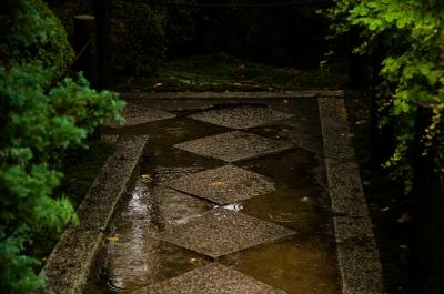soku_33290.jpg :: 庭園 地面 土 石 石畳