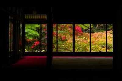 soku_33291.jpg :: 風景 街並み 和 和風 紅葉 和風庭園