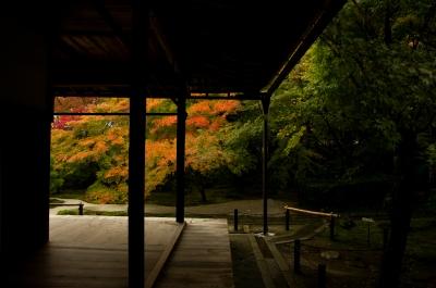 soku_33292.jpg :: 風景 街並み 和 和風 紅葉 和風庭園