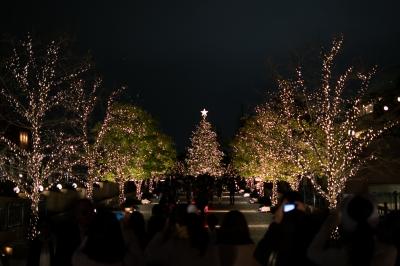 soku_33341.jpg :: 風景 街並み 都市の風景 夜景 クリスマスイルミネーション 恵比寿ガーデンプレイス