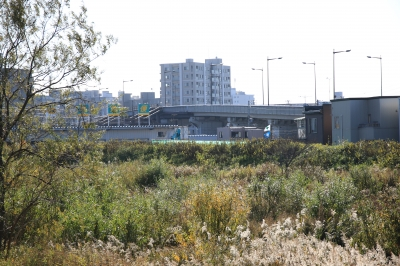 soku_33448.jpg :: 資料 サンプル テスト 17.70 SIGMA 風景 街並み 郊外の風景 河川敷