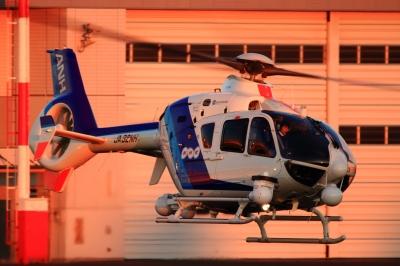 soku_33483.jpg :: 元旦 東京ヘリポート 乗り物 交通 航空機 ヘリコプター NHK
