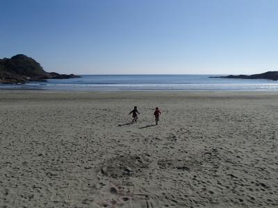 soku_33487.jpg :: 風景 自然 海 砂浜 伊勢ケ浜