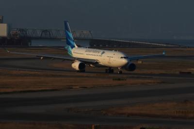 soku_33503.jpg :: 乗り物 交通 航空機 飛行機 旅客機