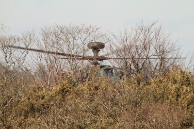 soku_33504.jpg :: 平成28年度 習志野空挺降下訓練始め/AH-64D