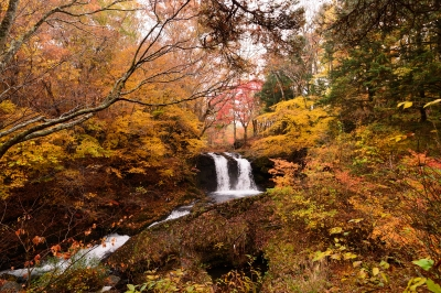 soku_33524.jpg :: 風景 自然 紅葉 滝