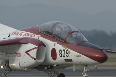 soku_33541.jpg :: 乗り物 交通 航空機 飛行機 軍用機 練習機 T.4(中等練習機) レッドドルフィン