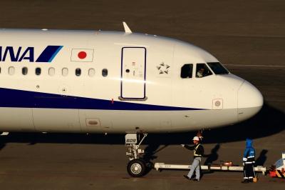 soku_33575.jpg :: 羽田 ANA/A321 乗り物 交通 航空機 飛行機 旅客機
