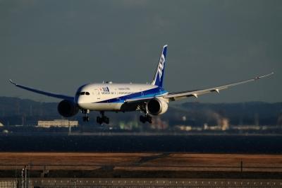 soku_33576.jpg :: 羽田 ANA/B787 乗り物 交通 航空機 飛行機 旅客機