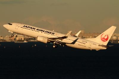 soku_33577.jpg :: 羽田 JAL/B737 乗り物 交通 航空機 飛行機 旅客機