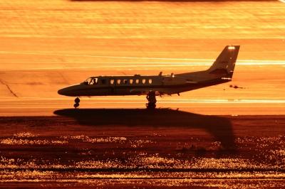 soku_33580.jpg :: 羽田 朝日新聞社用機/セスナ・サイテーション 乗り物 交通 航空機 飛行機 社用機