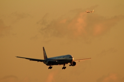 soku_33581.jpg :: 羽田 ANA/B777 B787 乗り物 交通 航空機 飛行機 旅客機