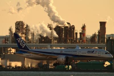 soku_33582.jpg :: 羽田 ANA/B787 乗り物 交通 航空機 飛行機 旅客機