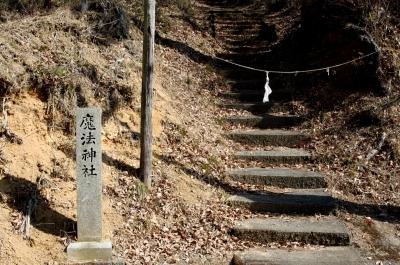 soku_33648.jpg :: 魔法神社 建築 建造物 神社 参道