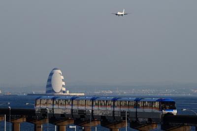 soku_33652.jpg :: JAL B737.800/HND 乗り物 交通 航空機 飛行機 旅客機