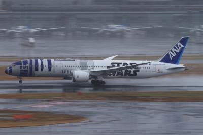soku_33664.jpg :: ANA B787/HND 乗り物 交通 航空機 飛行機 旅客機