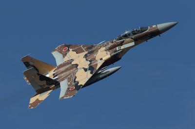 soku_33687.jpg :: 乗り物 交通 航空機 飛行機 軍用機 戦闘機 F-15DJ 特別塗装機