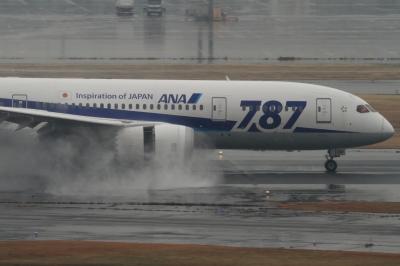 soku_33693.jpg :: ANA B787/HND 乗り物 交通 航空機 飛行機 旅客機 雨