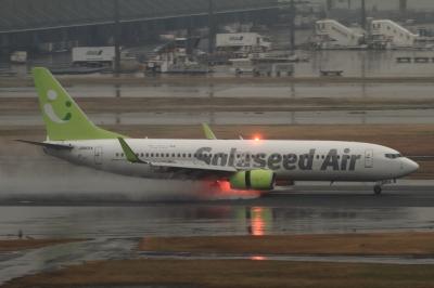 soku_33694.jpg :: SNJ B737.800/HND 乗り物 交通 航空機 飛行機 旅客機 雨