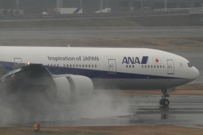 soku_33695.jpg :: ANA B777/HND 乗り物 交通 航空機 飛行機 旅客機 雨