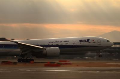 soku_33701.jpg :: ANA B777/HND 乗り物 交通 航空機 飛行機 旅客機 色 光 光芒