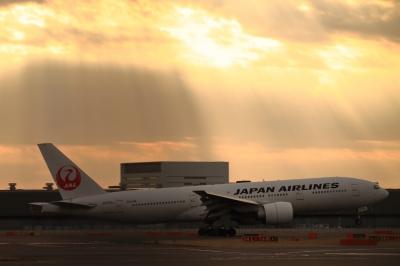 soku_33702.jpg :: JAL B777/HND 乗り物 交通 航空機 飛行機 旅客機 色 光 光芒