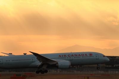 soku_33704.jpg :: ACA B787/HND 乗り物 交通 航空機 飛行機 旅客機
