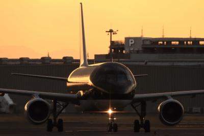 soku_33706.jpg :: SFJ A321/HND 乗り物 交通 航空機 飛行機 旅客機
