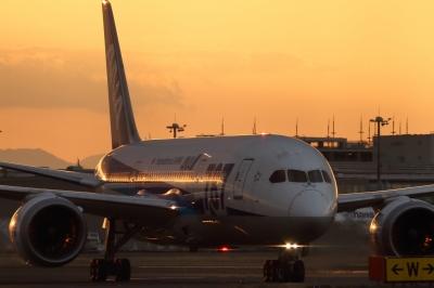 soku_33707.jpg :: ANA B787/HND 乗り物 交通 航空機 飛行機 旅客機