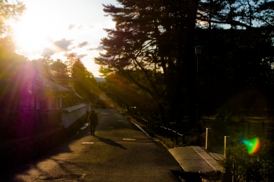 soku_33813.jpg :: 風景 街並み 都市の風景 住宅街 逆光 フレア ゴースト