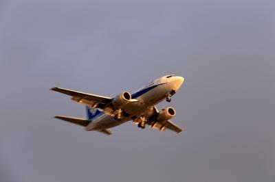 soku_33815.jpg :: デジカメ板 飛行機写真スレ〓第81便〓 飛行機 ヒコーキが足りない by Niigata