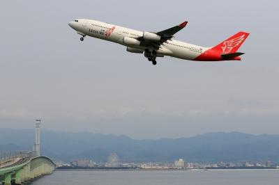 soku_33931.jpg :: 9 乗り物 交通 航空機 飛行機 旅客機 関空 エアレジャー祭り