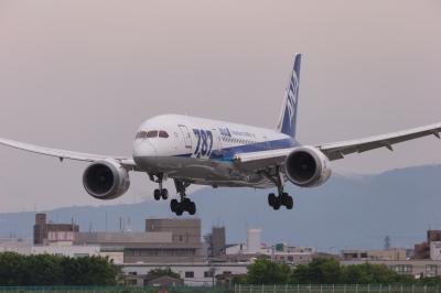 soku_33942.jpg :: 2016 GW ITM 乗り物 交通 航空機 飛行機 旅客機