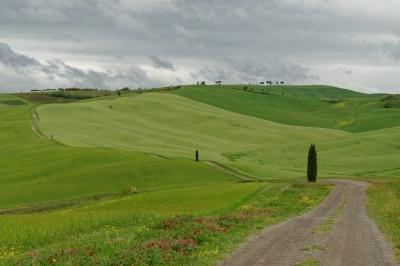 soku_33958.jpg :: 風景 街並み 郊外の風景 外国 自然 草原 野原