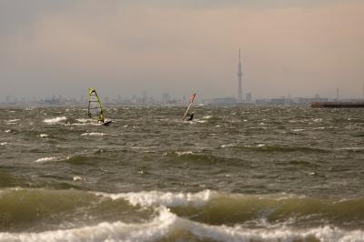 soku_33968.jpg :: 運動 スポーツ ウォータースポーツ サーフィン ウインドサーフィン スカイツリー