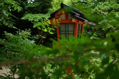soku_34072.jpg :: 建築 建造物 神社 灯籠