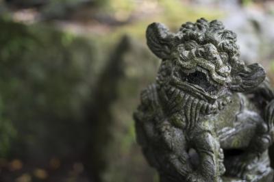 soku_34113.jpg :: 建築 建造物 神社 狛犬 シーサー