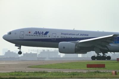 soku_34139.jpg :: ANA B777/HND 乗り物 交通 航空機 飛行機 旅客機