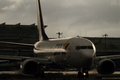 soku_34157.jpg :: SKY B737-800/HND 乗り物 交通 航空機 飛行機 旅客機