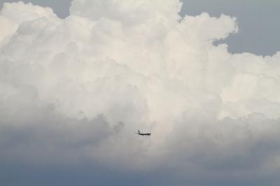 soku_34167.jpg :: AIRDO B767/東京ゲートブリッジ 乗り物 交通 航空機 飛行機 旅客機
