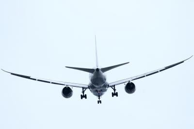 soku_34168.jpg :: ANA B787/東京ゲートブリッジ 乗り物 交通 航空機 飛行機 旅客機