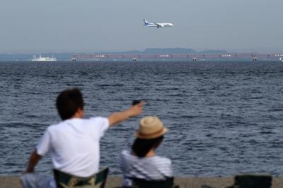 soku_34172.jpg :: ANA B787/城南島海浜公園 乗り物 交通 航空機 飛行機 旅客機