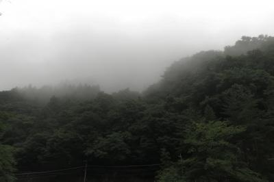 soku_34230.jpg :: 風景 自然 霧 霞 山 奥多摩