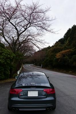 soku_34380.jpg :: 風景 郊外 車 ドライブ Audi S5 箱根ターンパイク 全開走行 G快感で脳が逝く