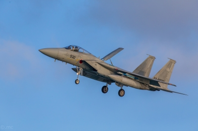 soku_34447.jpg :: 乗り物 交通 航空機 飛行機 軍用機 戦闘機 F.15J 04式空対空誘導弾(AAM.5) 模擬弾