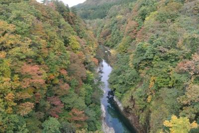 soku_34555.jpg :: 風景 自然 紅葉 小安峡