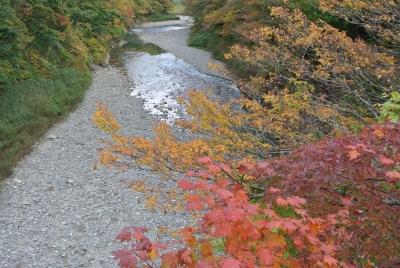 soku_34557.jpg :: 風景 自然 紅葉 錦秋湖周辺
