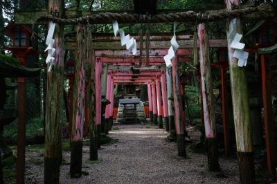 soku_34569.jpg :: 建築 建造物 神社 鳥居